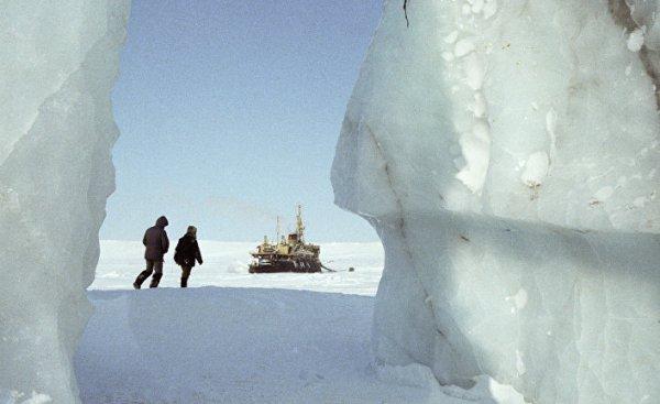 Ученые: Бактерий-первопоселенцев Арктики изучат на станции Томского университета