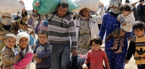Пользователи Сети предложили расселять беженцев из ЕС не только в Грузию, но и в Украину