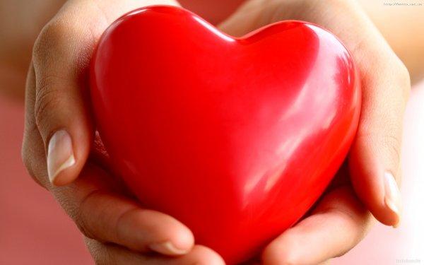 Ученые разобрались в механизме биения сердца