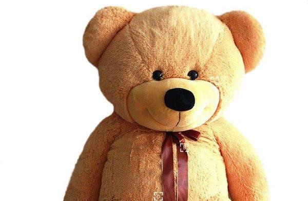 В Петербурге задержали похитителя плюшевого медведя