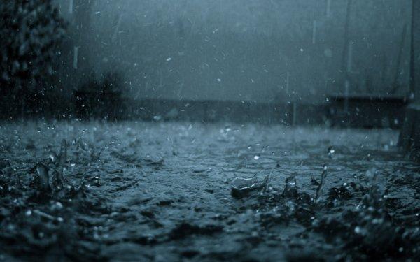 Ученые: Дождь является природным распространителем бактерий