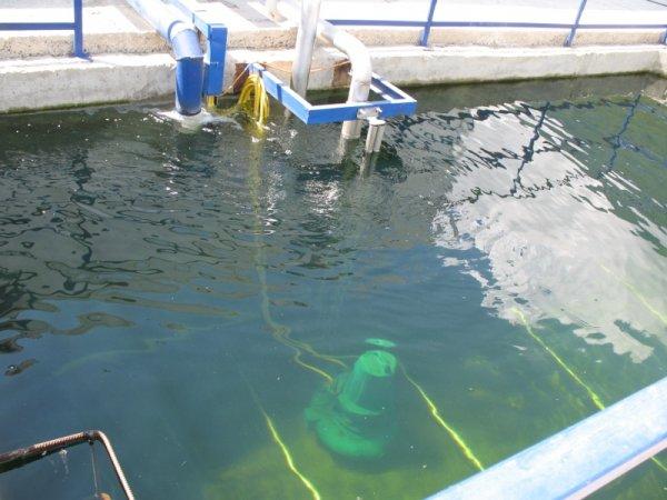 Ученые из Иркутска начнут очищать сточные воды газами и микроорганизмами