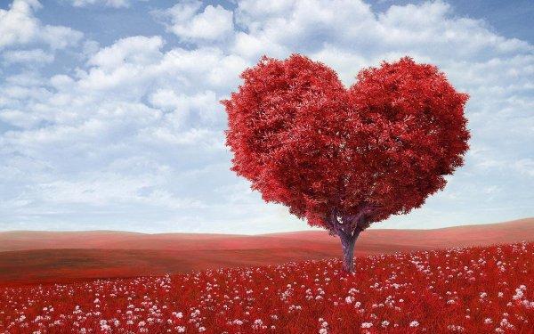 Обычный анализ крови может показать повреждения сердца