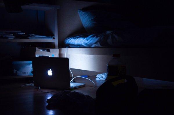 Дефицит дневного света сказывается на здоровье потомства
