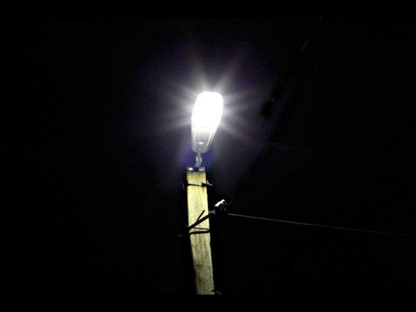 Ученые выяснили, что освещение в ночное время может влять на популяцию животных