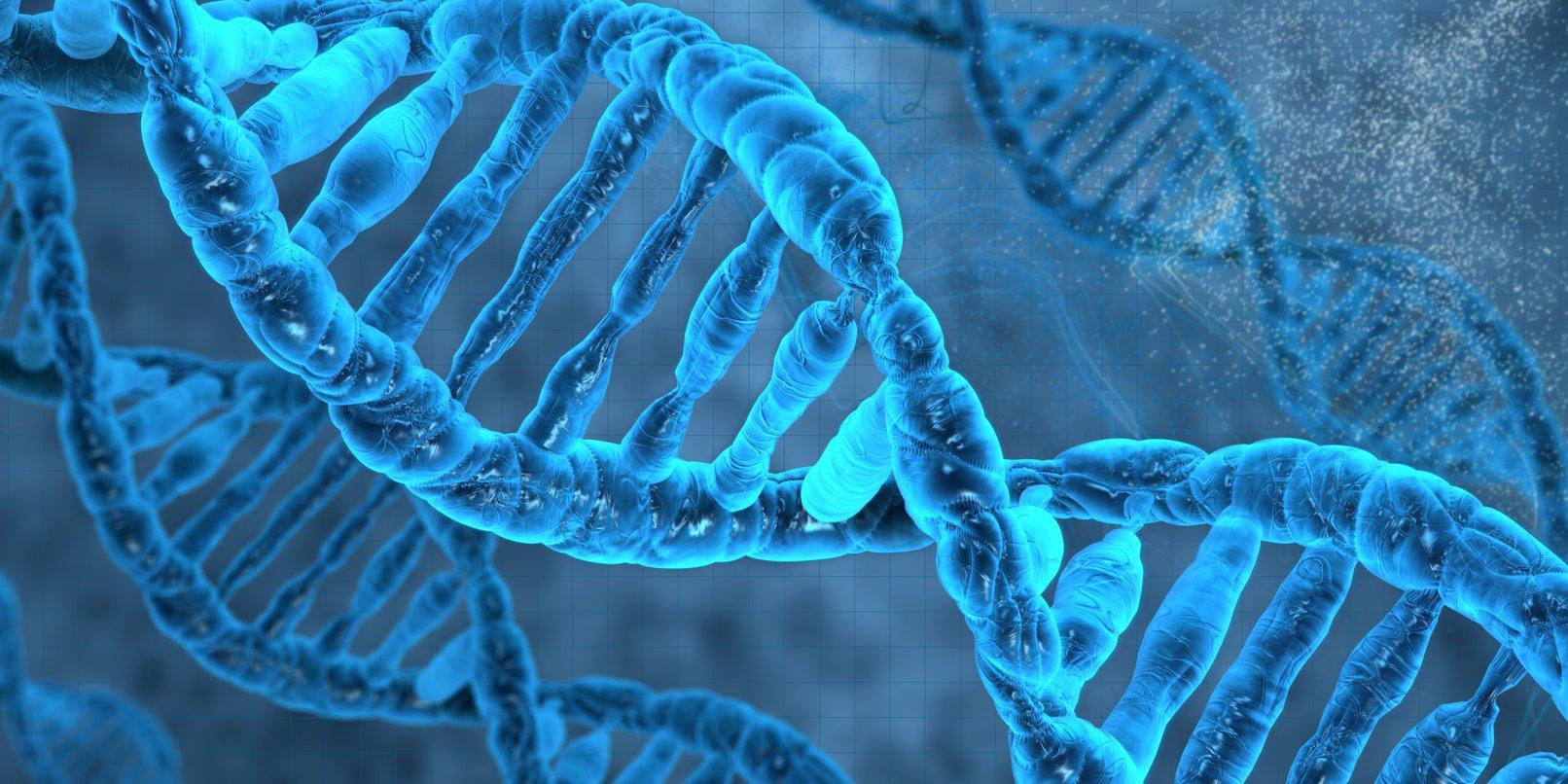 «Генетическая память» обокружающей среде передается на20 поколений— Ученые