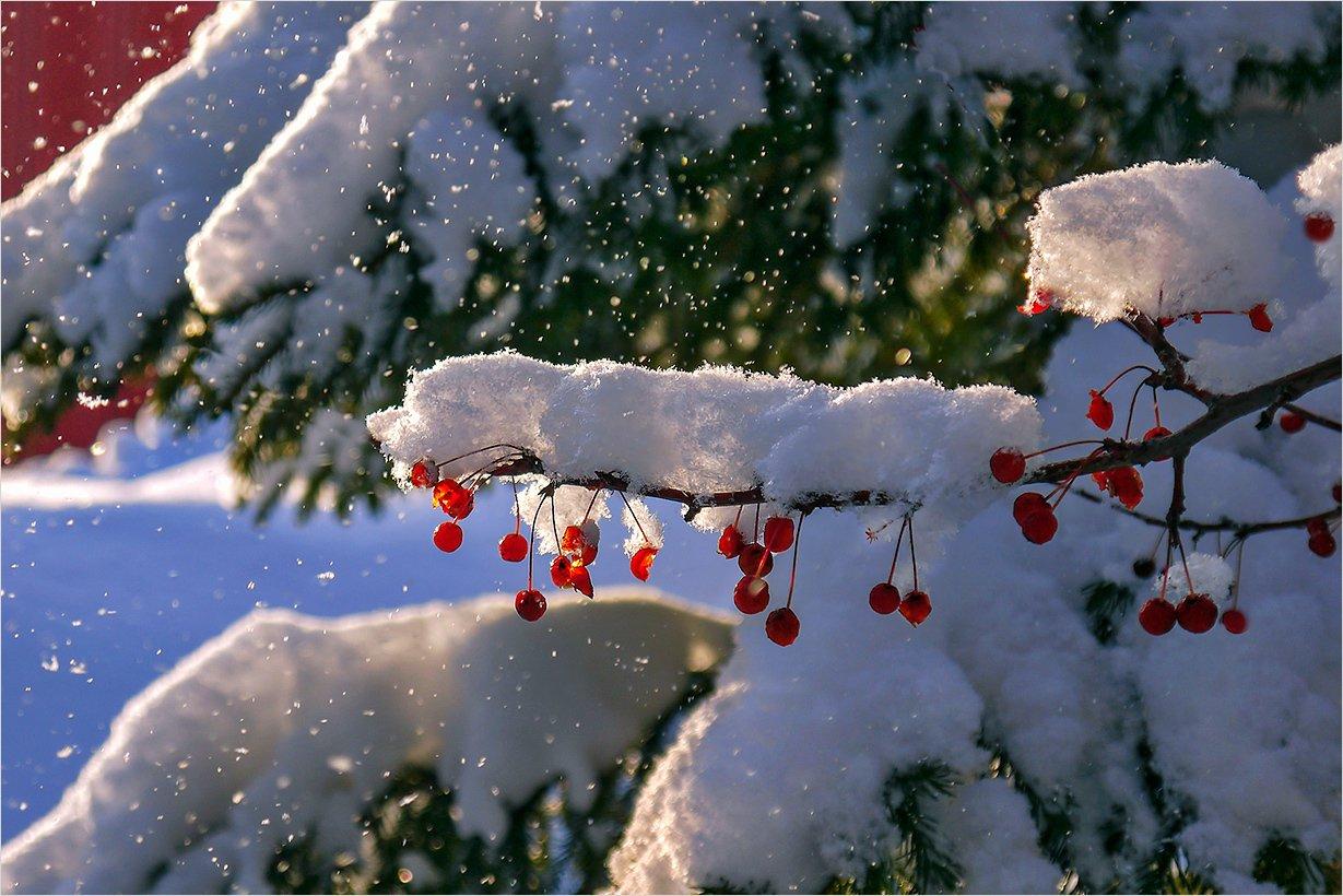 РежимЧП: Молдавию парализовал снежный циклон
