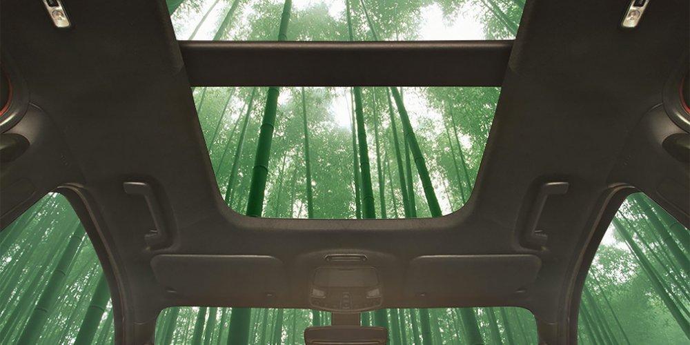 Вконструкции авто Форд применят бамбук