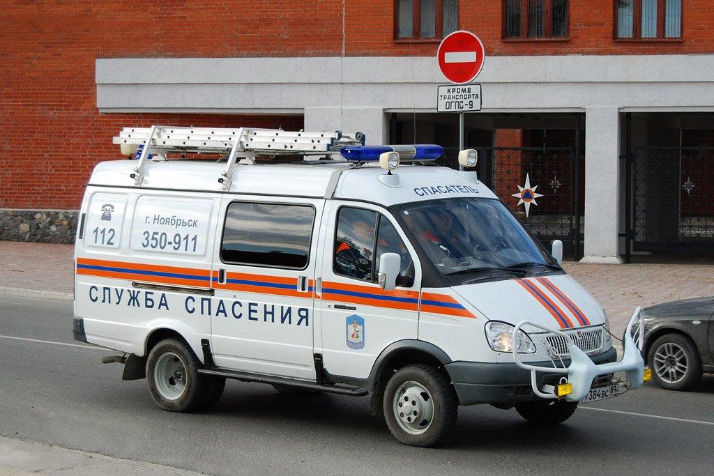 ВДТП под Рязанью пострадали 5 человек