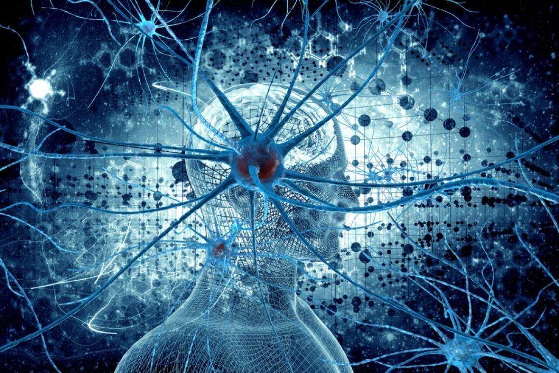 Биологи отыскали вероятную причину рассеянного склероза