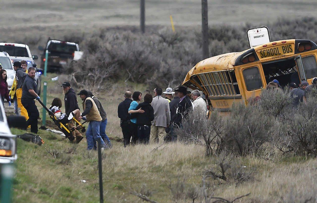 ВСША ученический автобус врезался вдерево из-за оленя
