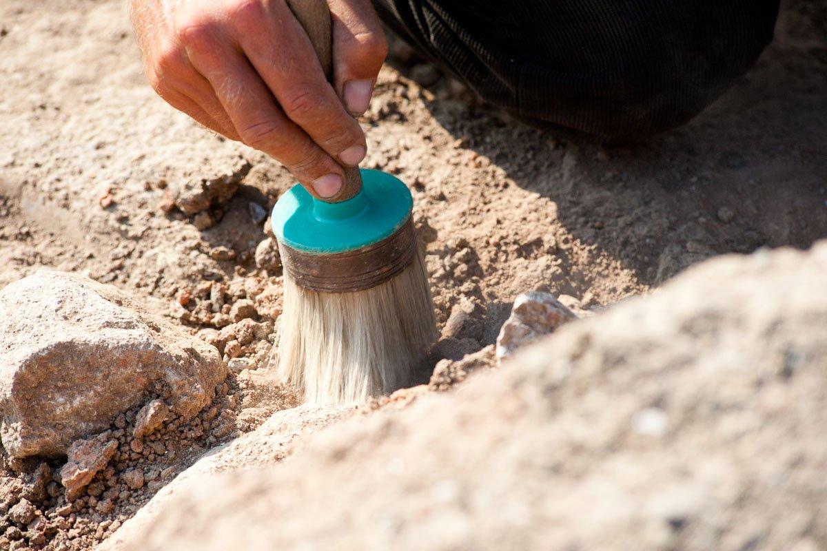 Старинная гробница состанками лошади найдена вСибири