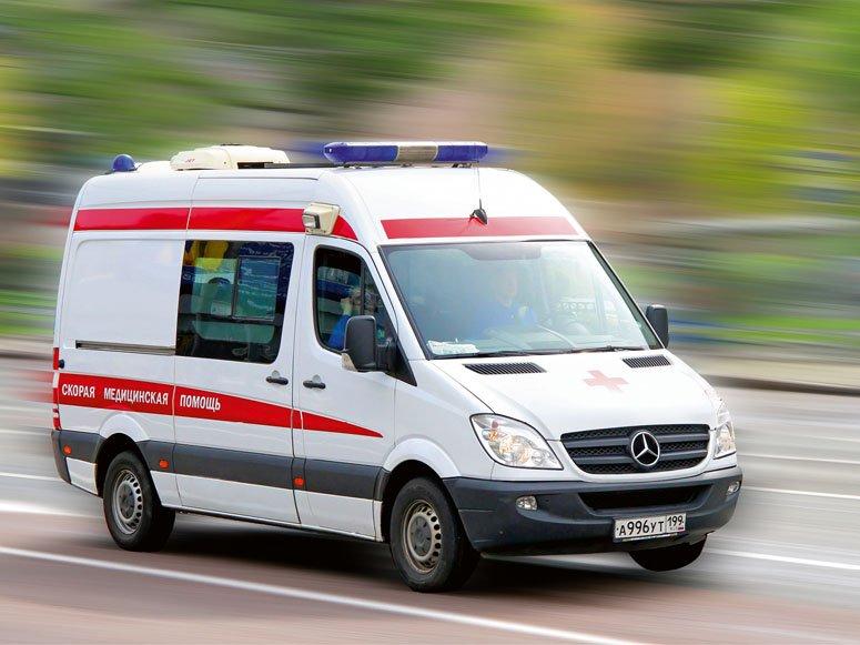 ВРостовской области зараженная бешенством собачка напала намалолетнюю девочку