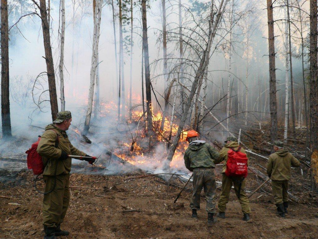Практически 30 000 человек мобилизовано наборьбу спожарами вКрасноярском крае