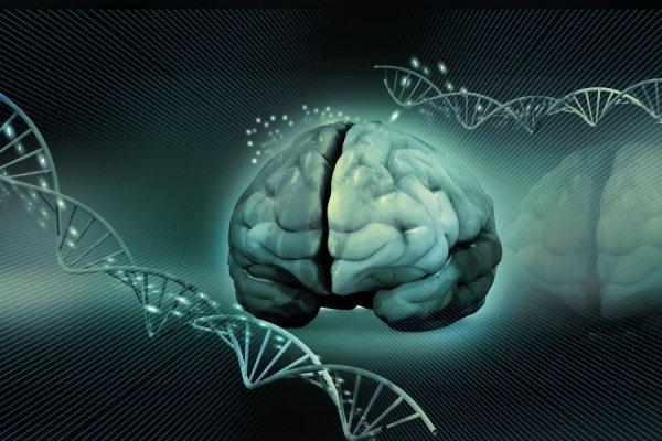 Разработанный новый метод генной терапии с использованием вирусов поможет победить болезнь Альцгеймера – Ученые