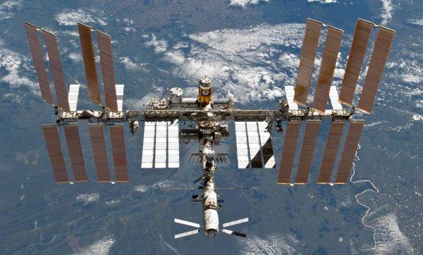 Игрушечные солнце и щенок станут индикаторами невесомости экспедиции к МКС