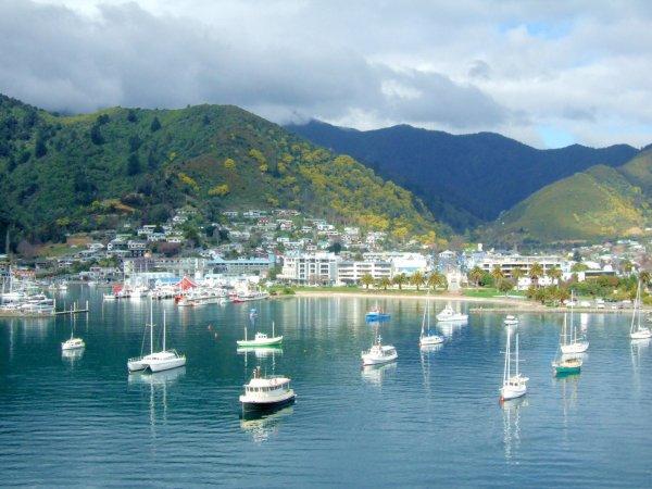 Сбитый с толку новозеландским путеводителем турист пожаловался властям