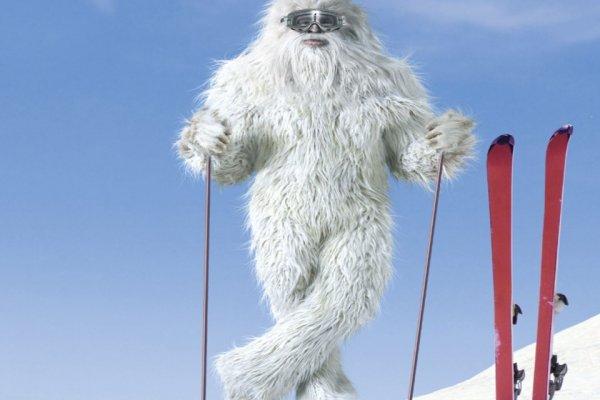 Канадские учёные доказали существование снежного человека