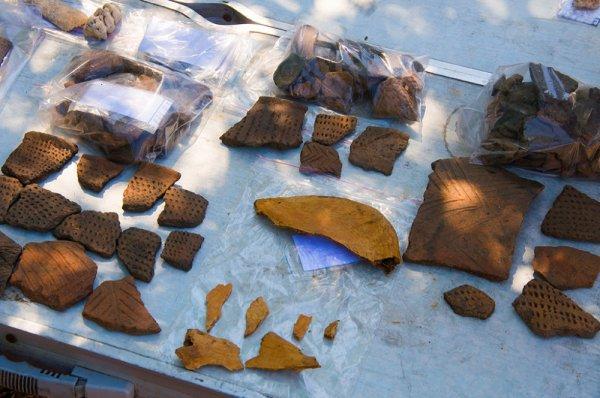 Ученые рассказали, чем питались жители Дальнего Востока в каменном веке