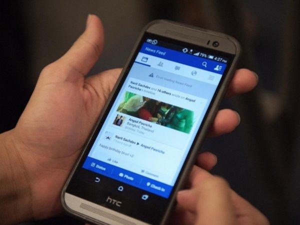 Mastodon может вытеснить Twitter с интернет-пространства