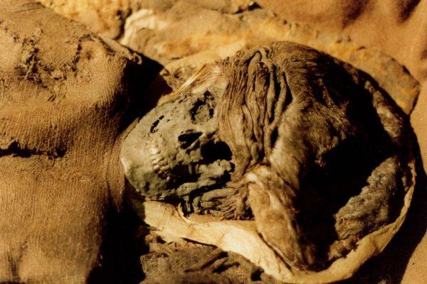 Мумия девушки бронзового века из Дании принадлежит мигрантке