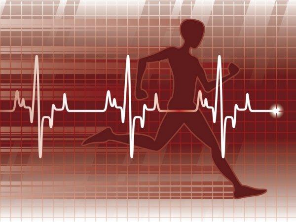 Эксперты: Физическая активность повышает шанс успешно перенести инфаркт