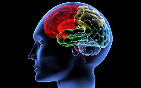 Ученые изобрели назальный спрей, моментально действующий на мозг