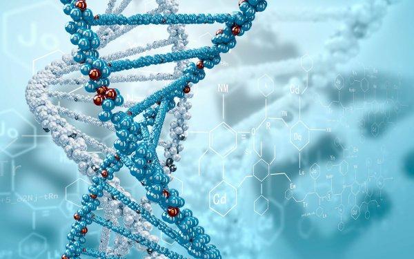 Ученые собираются найти родственников Иисуса Христа через анализ ДНК