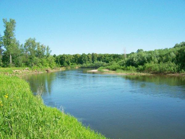 В Оренбургской области мужчины случайно уплыли на бревне по реке