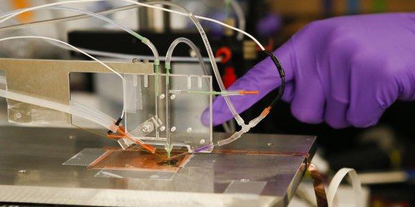 Ученый изобрел способ применять искусственный фотосинтез для очистки воздуха