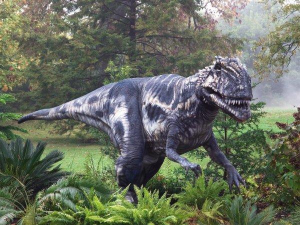 Ученые: Динозавры вымерли по причине действия молекулярного облака