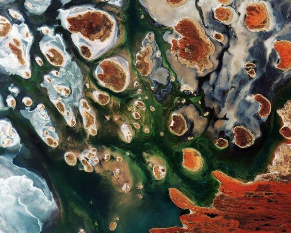 Спутник показал уникальный снимок пустынного оазиса