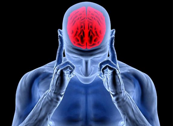 Ученые объяснили механизм регуляции кровотока в мозге