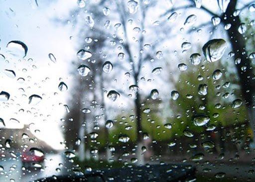 Вночь навторник пройдут обильные дожди