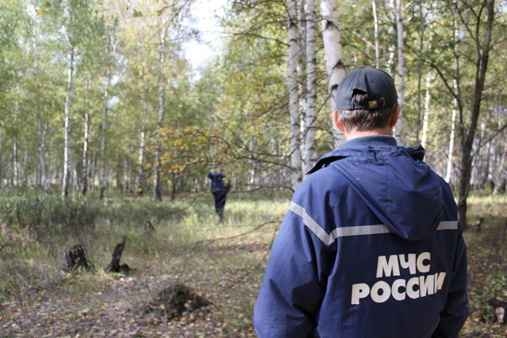 ВКрымском районе пропала 12-летняя школьница
