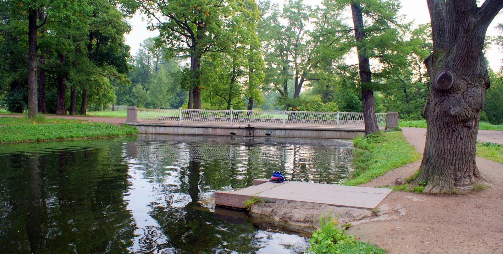 ВПетербурге отчаянная мать спасла из водоема тонувшего ребенка