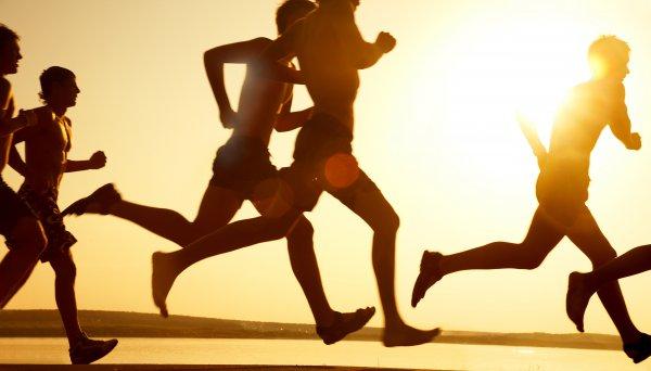 Биологи объяснили причины улучшения памяти от спорта
