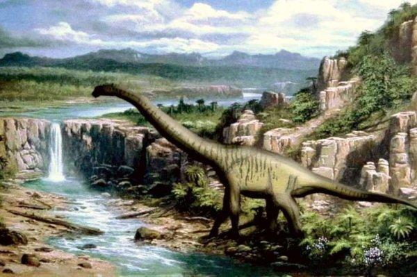 Ученые нашли в музее Франции останки крупнейшего динозавра Европы