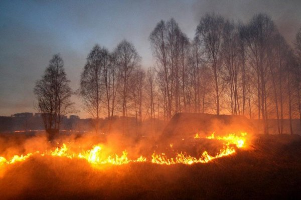 Хабаровск взят в «кольцо» пожарами