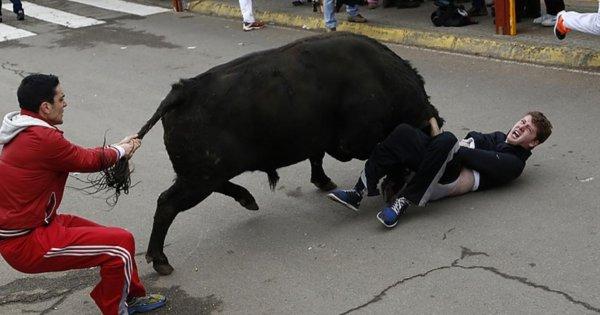 На видео попала борьба прохожих с напавшим на человека быком