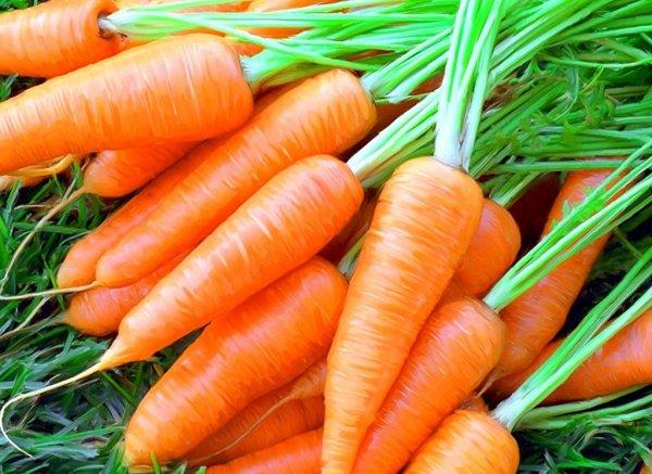 Морковь останавливает рост раковых клеток - Ученые