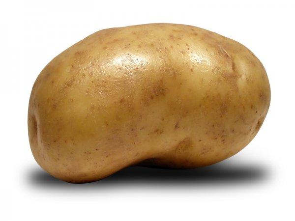 Ученые опровергли диетичность картофеля