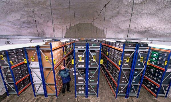 """Норвегия усилит защиту семян в """"хранилище судного дня"""""""