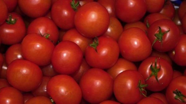Белоруссия стала крупнейшим рынком сбыта для турецких томатов