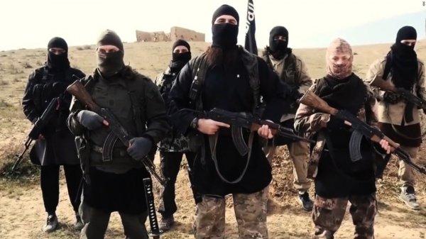 Ученые выяснили отличия норм морали для обычного человека и террориста