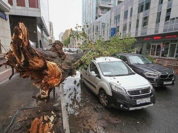 НаУрале из-за урагана умер один человек ипострадали больше 10