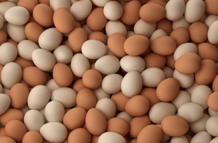 Куриные яйца препятствуют задержке вразвитии маленьких детей