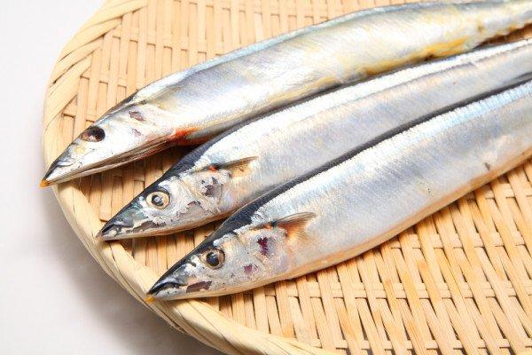 Ученые назвали сайру самой полезной консервированной рыбой