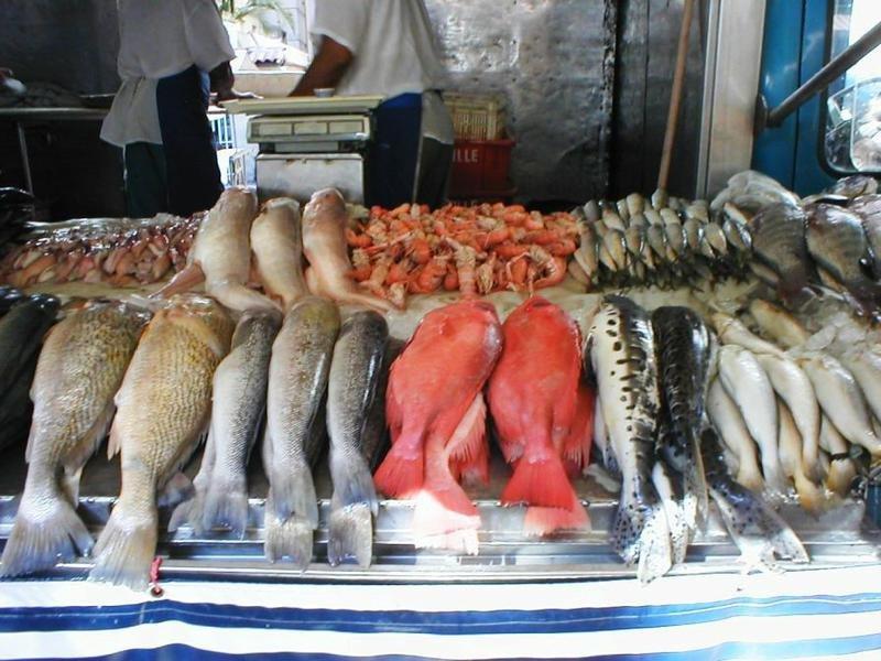 рыболовный магазин на егорова