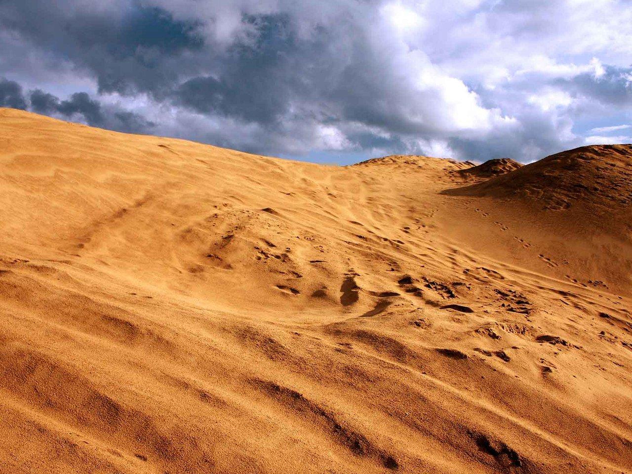Стали известны детали погибели 12-летнего ребенка под песком вМордовии